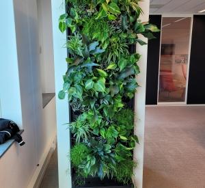 Belcel-met-beplanting-green-wall